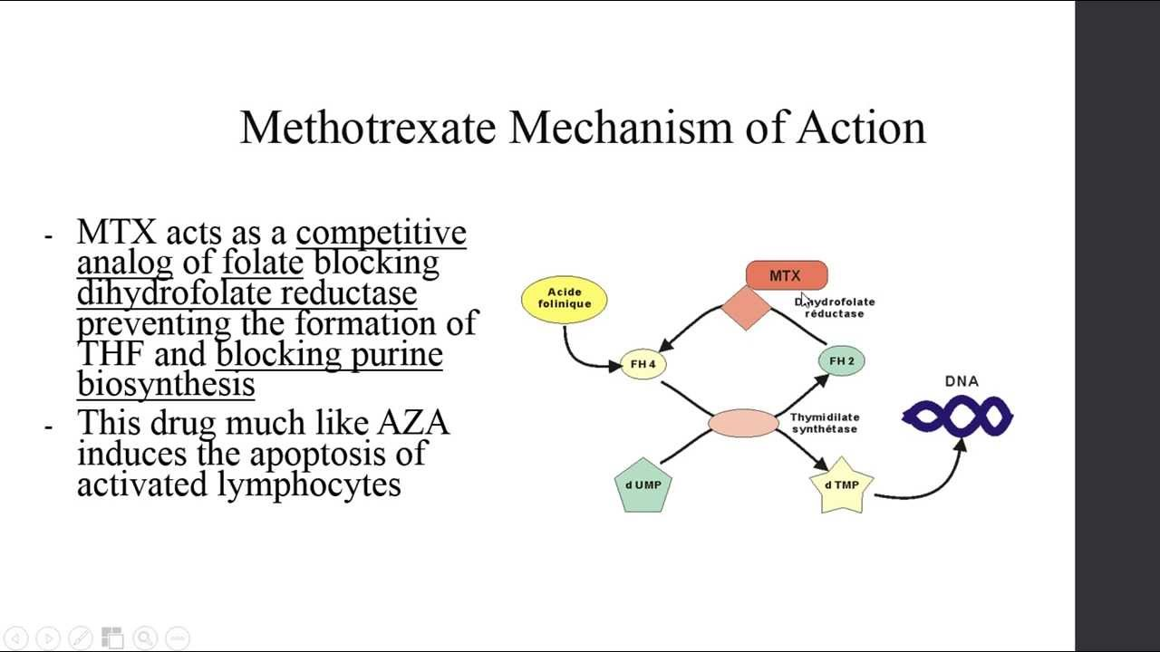 Immunosuppressant Drug's - Methotrexate - YouTube