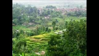 Land for sale in Tabanan mountain and rice fields view -- LTB013