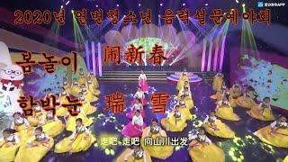 2020년 연변티비 청소년 음력설 문예야회