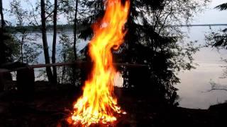 Костер на берегу озера Волго.(Отличный костер на берегу озера Волго. 14.06.2010 г. Клуб