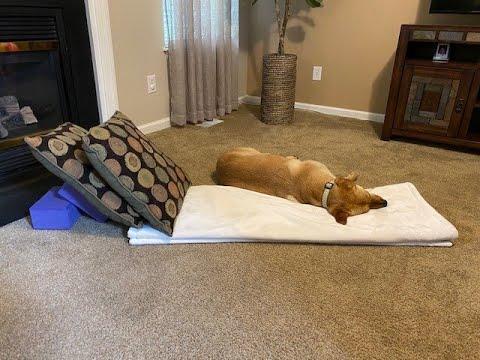 kasey's 10 minute restorative yoga practice  reclining