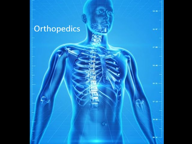 Orthopedics - Part 1 of 4: Overview & Skeletal Anatomy Review
