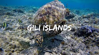 UPDATE FROM THE GILI ISLANDS | VLOG 022