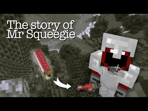 The Story Of Mr Squeegie