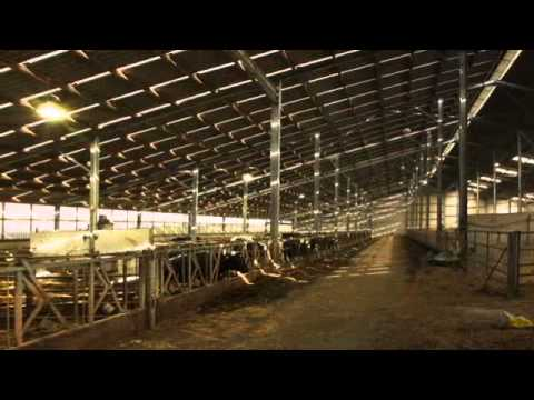 Gleeson Steel & Engineering - Farm Buildings