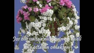 Tapio Rautavaara: Niin minä neitonen sinulle laulan +Lyrics