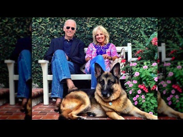 EP54: Dr. Jill Biden