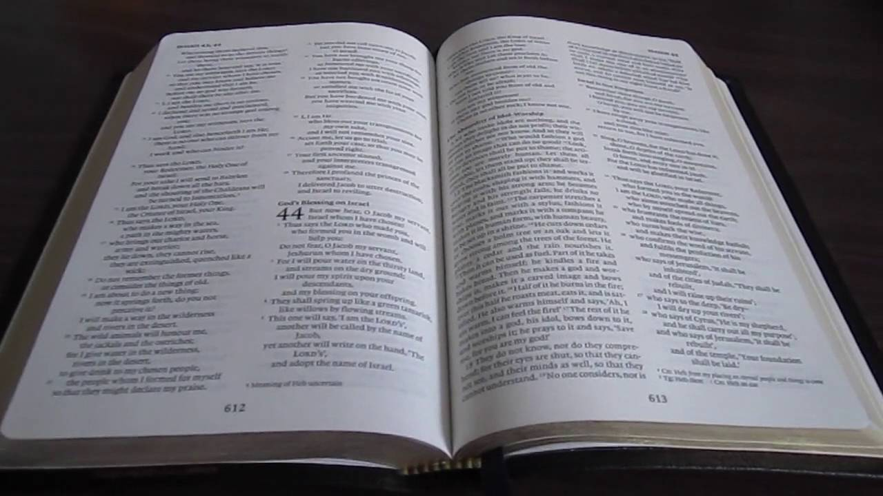 Bible review cambridge nrsv text edition in black french morocco bible review cambridge nrsv text edition in black french morocco fandeluxe Image collections