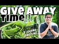 Tips Merawat Baby Iguana Pengumuman Give Away  Mp3 - Mp4 Download