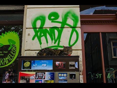 Boxes of Dresden [short documentary]