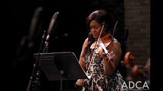 Hoffmeister Concerto for Viola in D Major I. Allegro   La Camerata Washington Heights