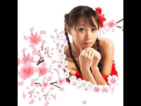 cherry blossoms dating asian