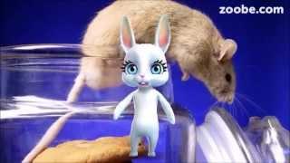 Zoobe Зайка Басня, Мышь и Кот (И пиво)