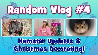 VLOG #4 - Hamster Updates & Christmas Decorating! Thumbnail