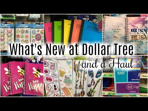 WHAT's NEW AT DOLLAR TREE + DOLLAR TREE HAUL | AMAZING NEW FINDS!!