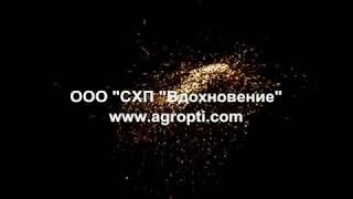 Корпоративное видео компании СХП Вдохновение