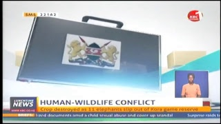 KBC Lunchtime News-14/06/2018
