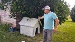 Air Crete Dog House Build