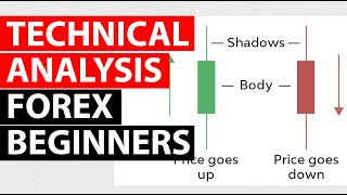 Price Action And Technical Analysis Terms For Forex Beginners