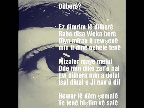 Dina Evine