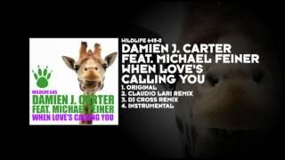 Damien J. Carter featuring Michael Feiner - When Love