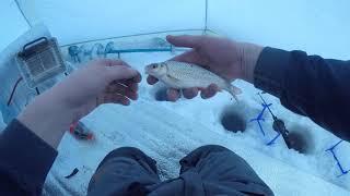 Клёвая рыбалка на Вилейском водохранилище Краткий обзор эхолота Garmin