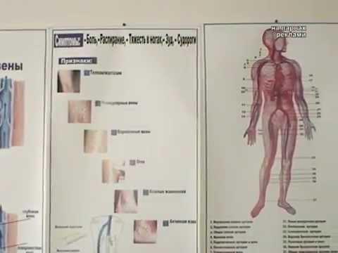 Личный сайт врача сердечно-сосудистого хирурга,флеболога