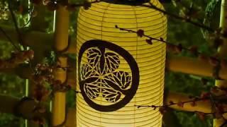 「夜・梅・祭」(弘道館)