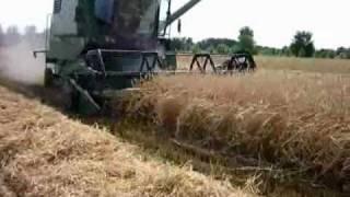 żniwa 2009 - ernte - harvesting in Poland - am Polen- w Polsce