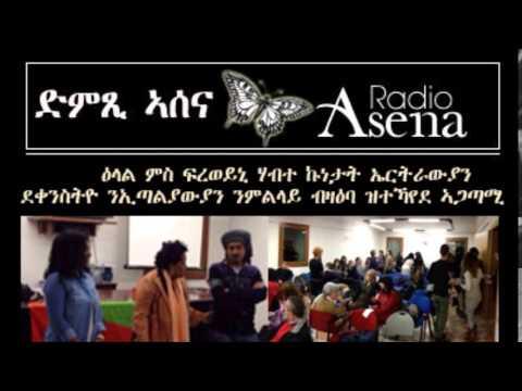Voice of Assenna: Freweini Habte Re Efforts to Inform Italians About Eritrean Women's Challenges