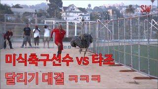 미식축구선수 vs 타조  달리기 대결 ㅋㅋㅋ