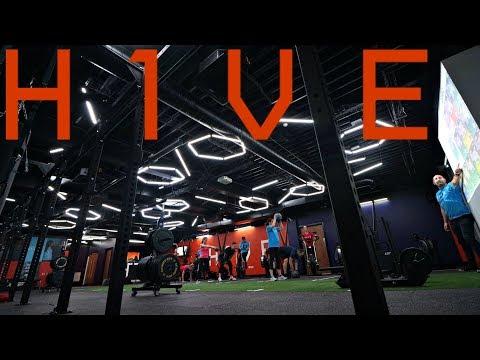 H1VE - Boutique Fitness Studio