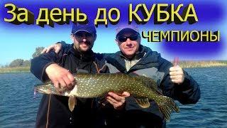 Ловля щуки / Рыбалка на щуку / Щука в сентябре / Щука
