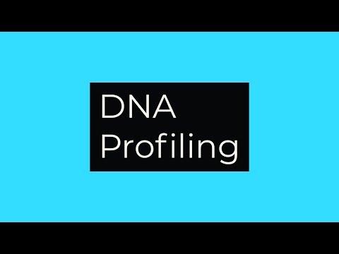 DNA Profiling-Basic Outline