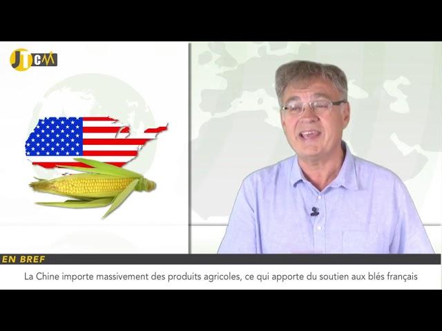 La production de maïs aux États-Unis et en Ukraine incertaine !