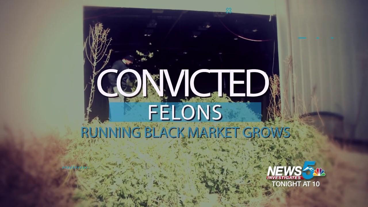 News 5 Investigates: Targeting illegal marijuana and the black market