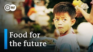 Indonesia: food for the future - Founders Valley (6/10) | DW Documentary