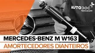 Como substituir Amortecedor de suspensão MERCEDES-BENZ M-CLASS (W163) - vídeo guia