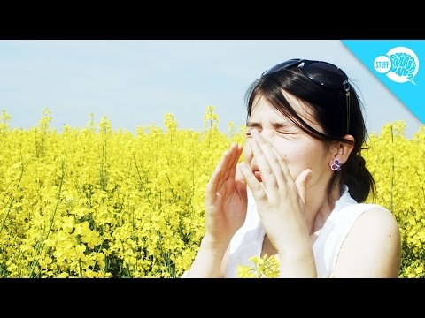 Why Do Some People Sneeze In Sunlight?