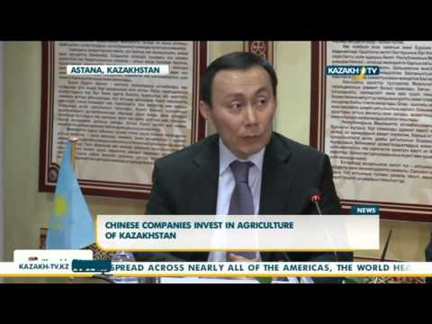 Chinese companies invest in agriculture of Kazakhstan - Kazakh TV