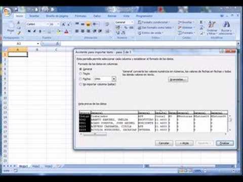 Abrir archivo de texto delimitado en Excel