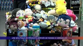 Yvelines | Une boutique de produits dérivés de manga à Versailles