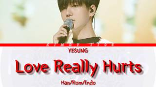 Download YESUNG 'Love Really Hurt (Ost Tazza)' Lyric [Han/Rom/Indo]