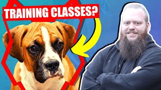 SHOULD MY BOXER GO TO PUPPY TRAINING CLASSES