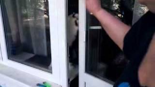 К чему сниться падения человека с балкона :: newvideoblog.