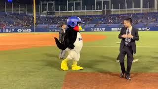 愛され球団の東京ヤクルトスワローズやつば九郎・つばみ、神宮球場に関...