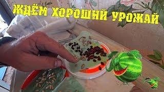 РАБОТА КИПИТ - Энергосети, посадил арбузы дыни, сено собрал / Семья в деревне