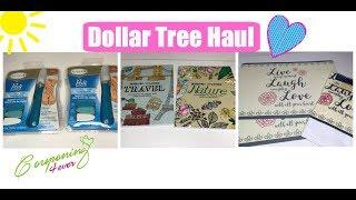 Amazing New Finds Dollar Tree Haul 💖
