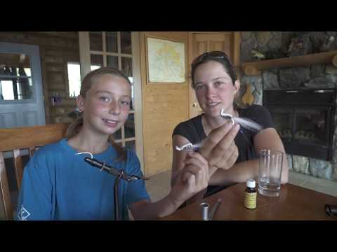 Pêche à la mouche au brochet réservoir Gouin