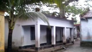 pirojpur school vedio